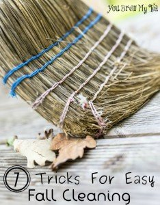 Easy Fall Cleaning