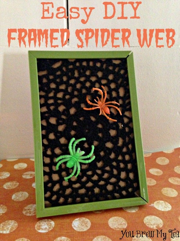 Framed Spider Web