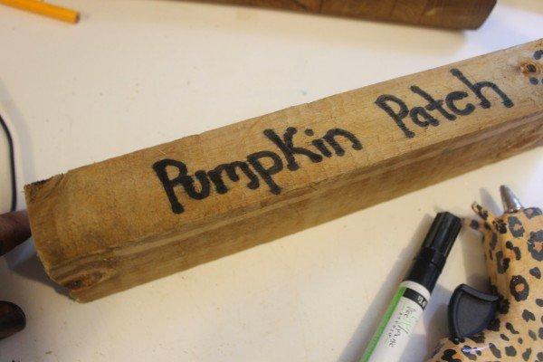 pumpkinpatchwrite