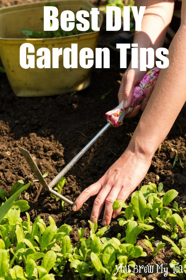 Best DIY Gardening Tips