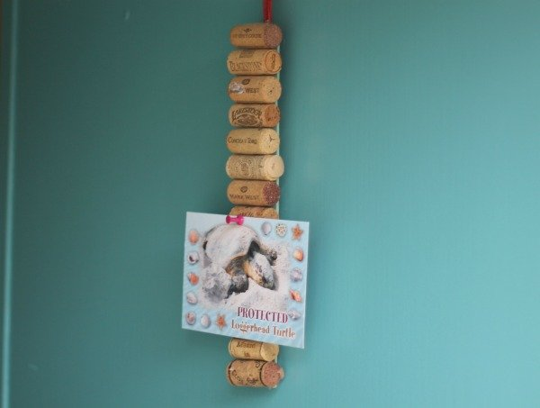 mini cork strip