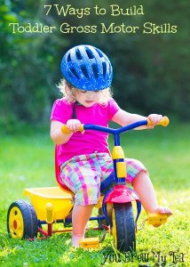 Toddler Gross Motor Skills