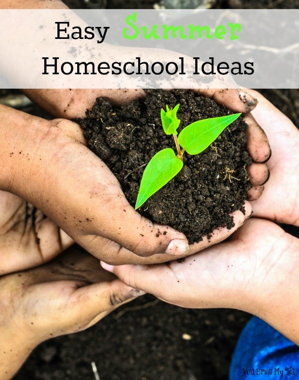 Easy Summer Homeschool Ideas
