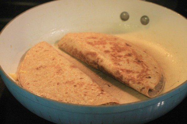 chicken quesadillat