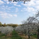Romantic Getaways In Michigan