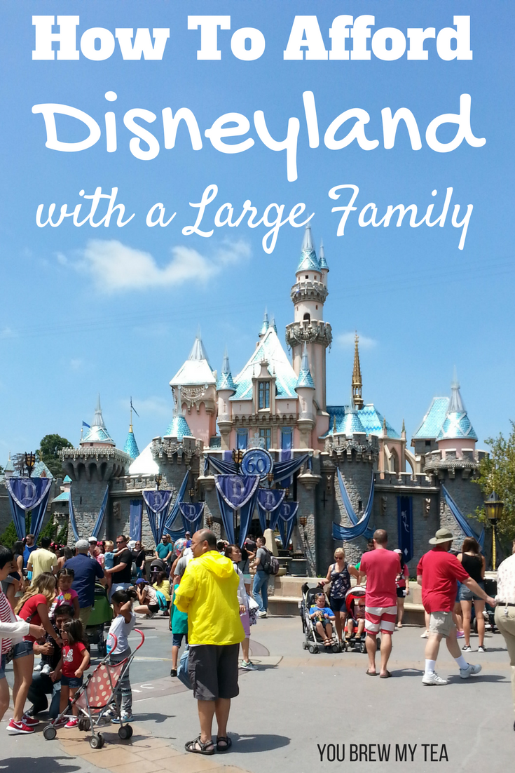 Don't miss our tips for How to Afford Disneyland with a large family!  Learn our budget tricks for an epic family vacation at Disneyland!