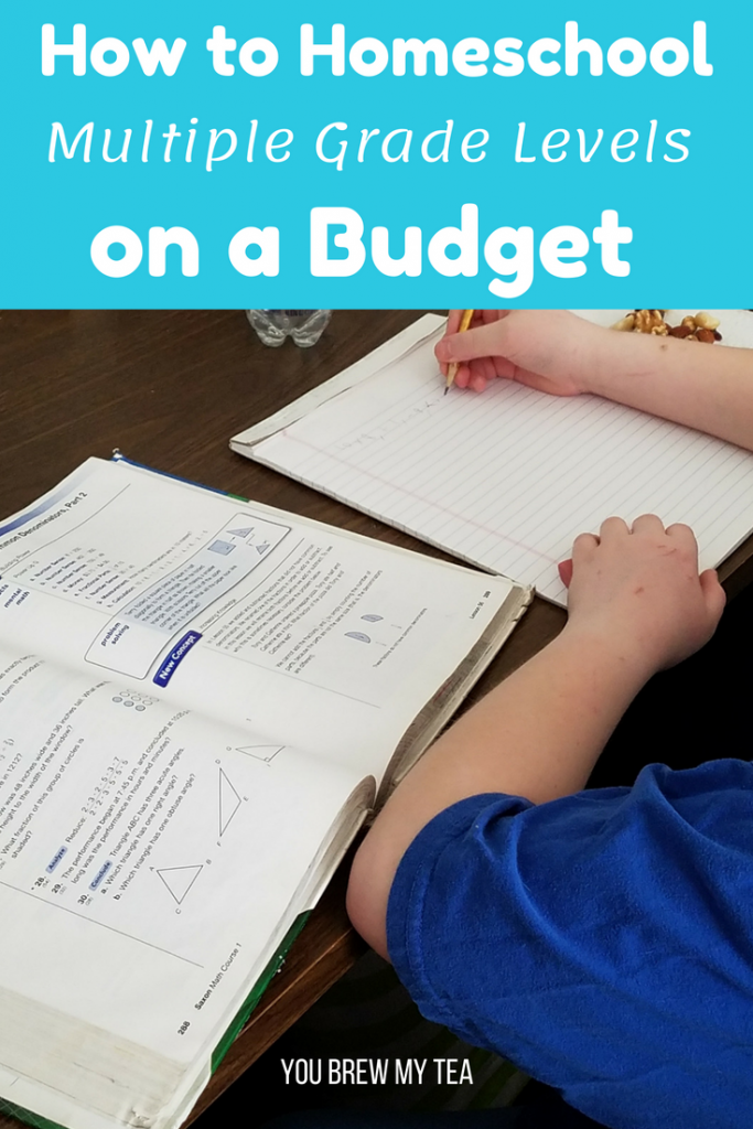 Follow our Budget Homeschool Tips for helping make it easier to homeschool multiple grades at one time without breaking the bank! There are tons of ideas here to keep you teaching without spending a ton of money!