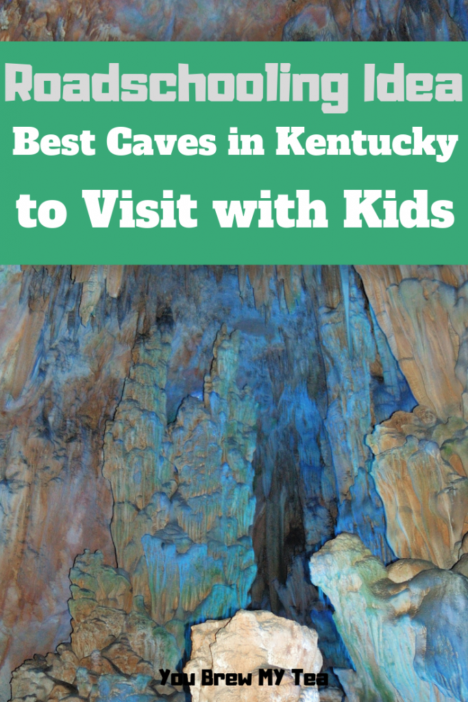 Roadschooling with kids is a fun way to travel while learning. This list of the best Caves in Kentucky to visit with your kids is ideal for an upcoming trip that can double as homeschool education!