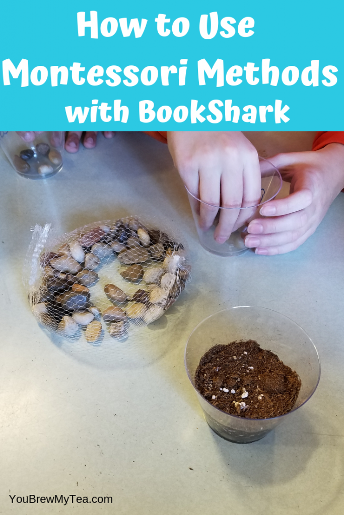 Rock and sand in small bowls on flat surface with children putting them into small cups