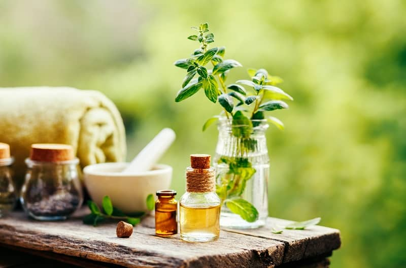 Method 1: Make Peppermint Oil in an Olive Oil base
