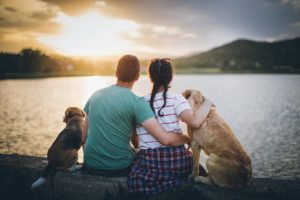 How Getting a Dog Will Benefit the Whole Family
